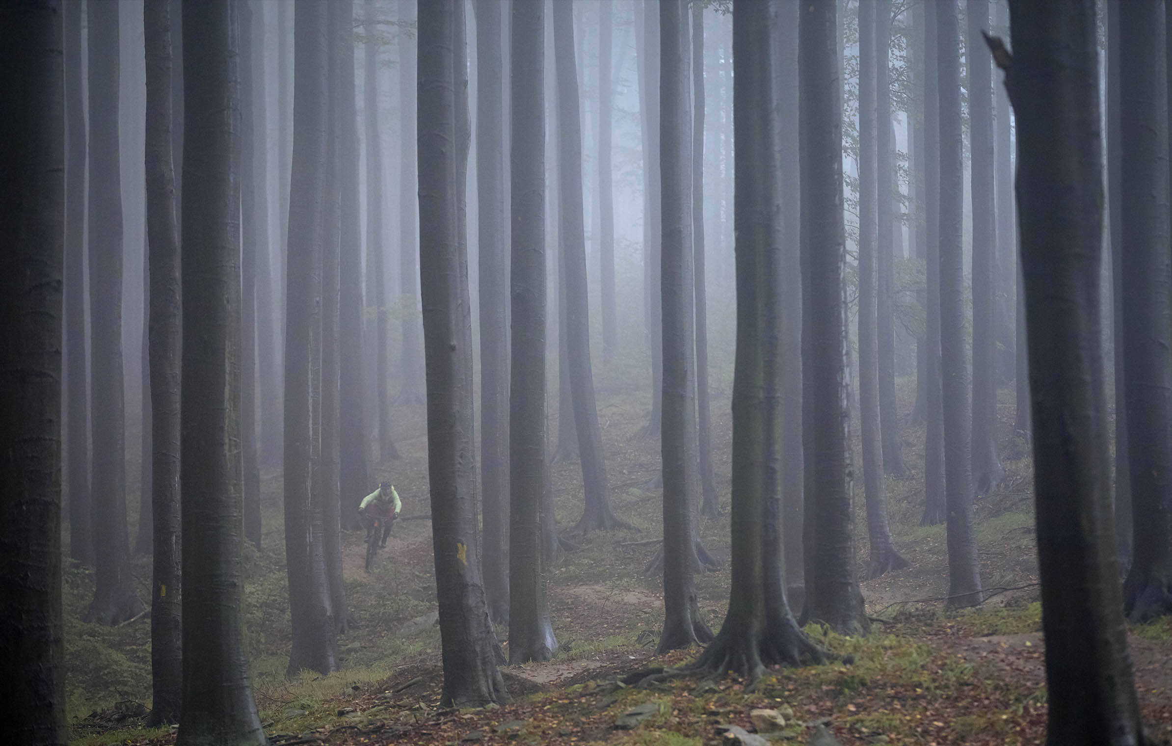 into_the_wild_bike_mountain_adventure_czech_republic_poland_trees_fog