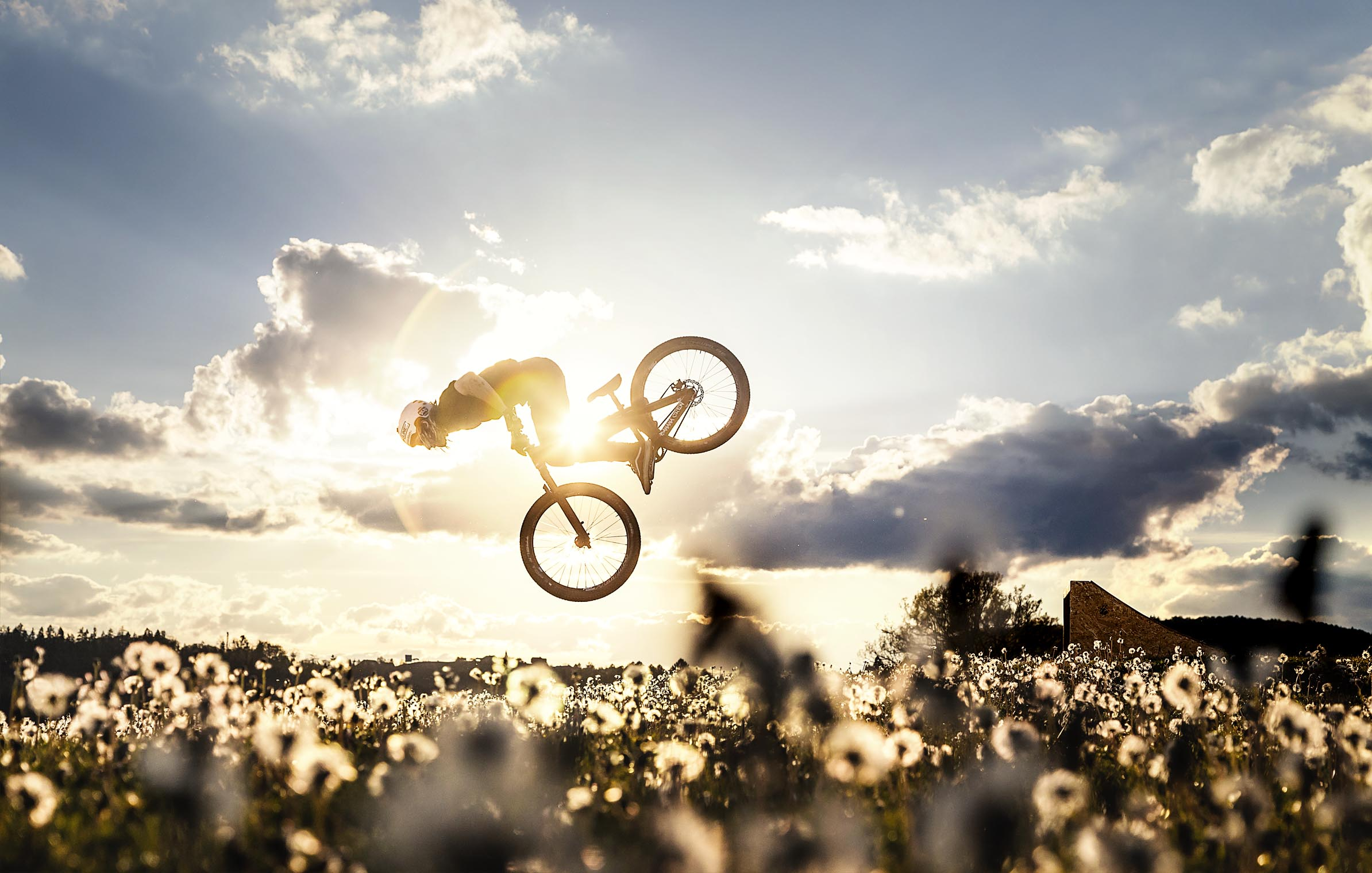 mtb_print_porn_golf_course_bernd_winkler_backflip_meadow_dandelions