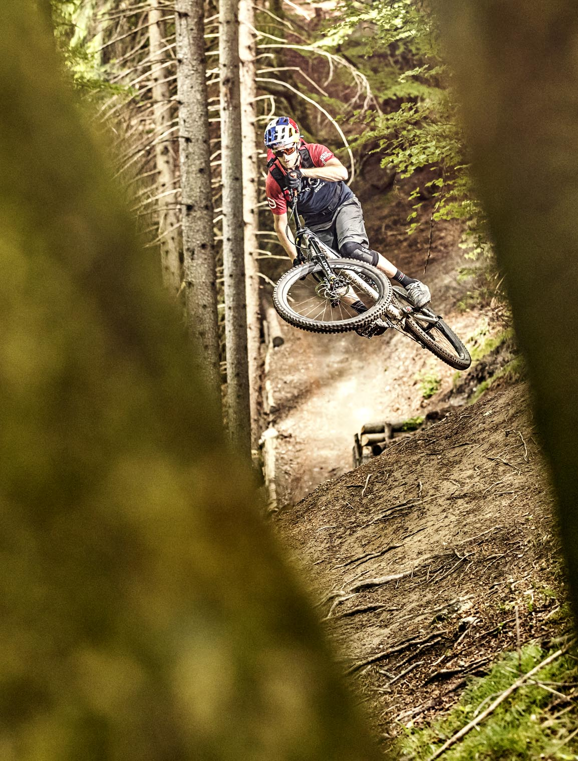 sheep_innsbruck_crankworx_tom_öhler_arzler_alm_trail