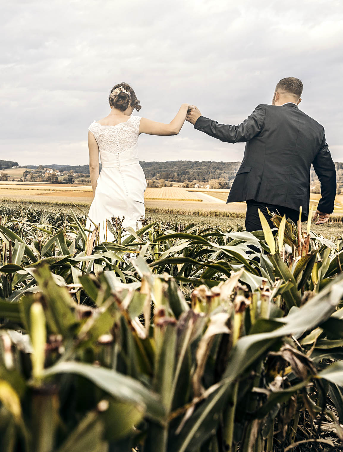 wedding_thomas_simone_bräutigam_groom_hand_in_hand_corn_field